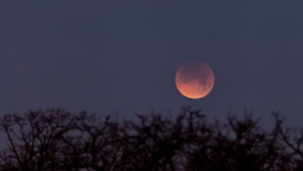 PHOTOS: Super Blue Blood Moon Over North Texas