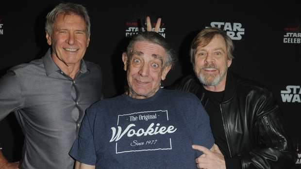 Peter Mayhew Through the Years