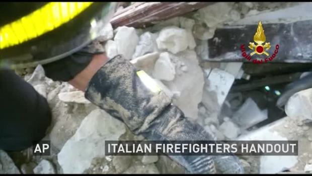 Cat Rescued Weeks After Italy Quake