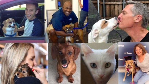 NBC 5 & Telemundo 39 Share Pet Love Stories