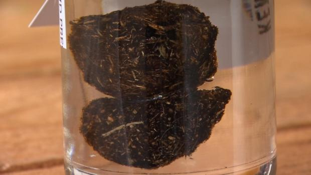 [NATL] Man Sells Droppings of Kentucky Derby Champ for $200 a Jar
