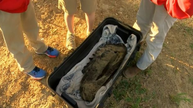 [DFW] Boys Unearth Mastodon Bones