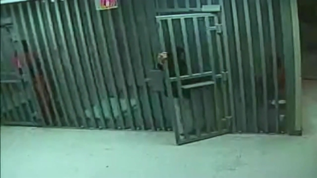 [DFW] RAW VIDEO: Authorities Release New Sandra Bland Video