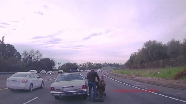 [DFW] Sheriffs Deputy Rescues Dog