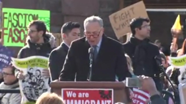 Sen. Charles Schumer Fires up Crowd at Battery Park Protest