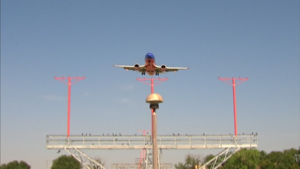Bird Threat to Planes Still Evident Near Dallas Love Field