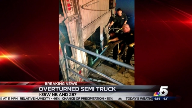 [DFW] Overturned Cattle Truck Closes Fort Worth Ramp