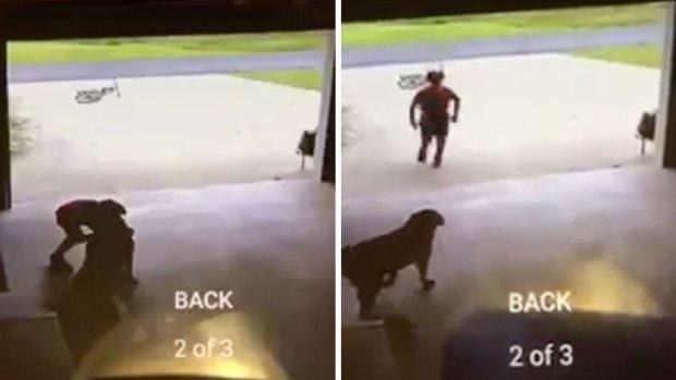 Boy Caught Hugging Neighbor's Dog