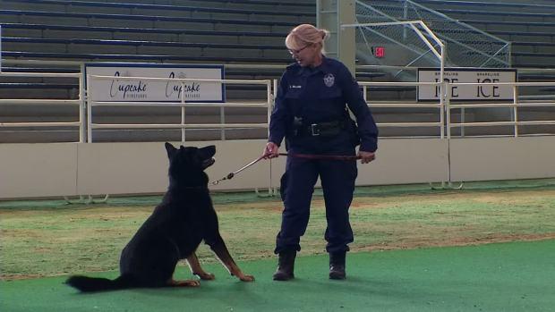 [DFW] Dallas Police Expanding K-9 Unit