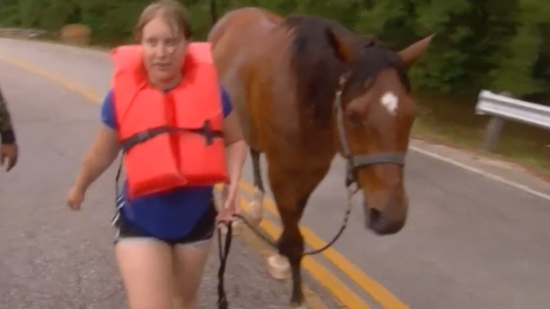 Horses Rescued From Texas Flood After Water Rises Near Stable