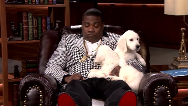 [NATL] 'Tonight Show': Pup Quiz with Tracy Morgan