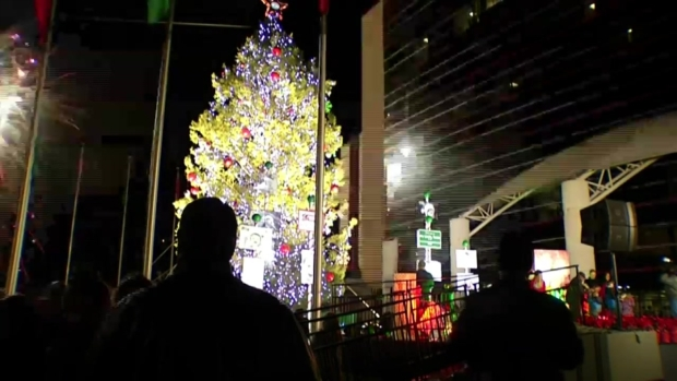 Raw Video: TMS Lights 'Biggest Living Christmas Tree' in TX