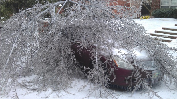 Your Winter Storm Photos: December 6, 2013 - Gallery III