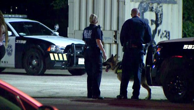 Dallas Girl, 5, Unharmed After Possible Abduction