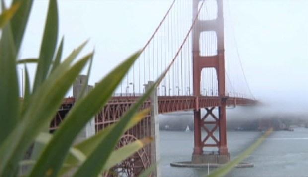 [BAY] $76M Suicide Barrier OK'd for Golden Gate