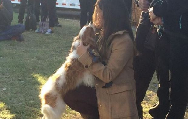 [NATL-DFW] Dallas Nurse Nina Pham Reunited With Dog