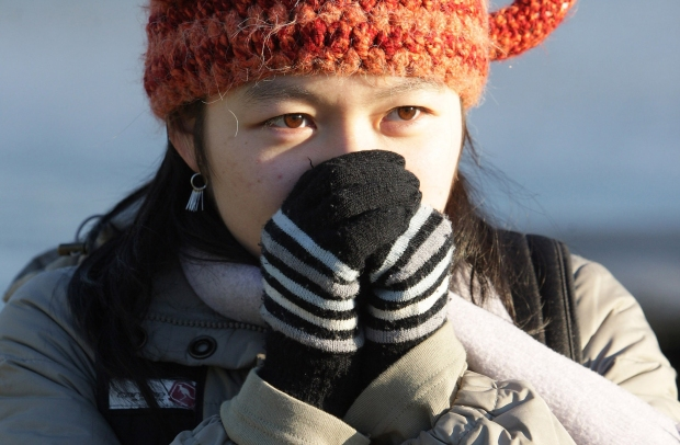 North Texans Prepare for First Freeze