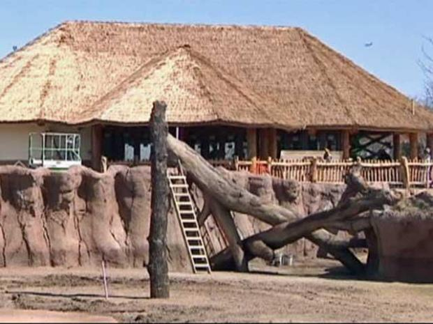[DFW] Sneak Peek at the Dallas Zoo