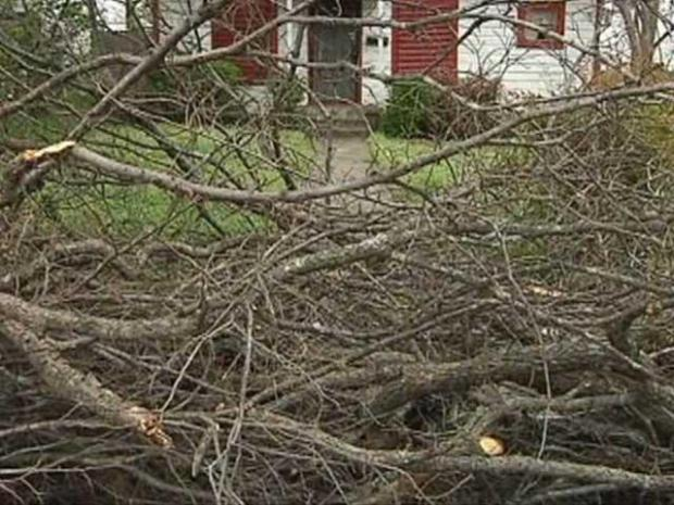 [DFW] Storm Debris Cleanup Nearly Finished