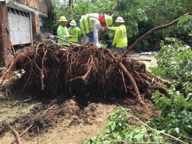 Your Storm Damage Photos - June 16, 2019