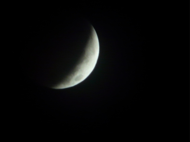 Viewer Photos: Lunar Eclipse Over DFW