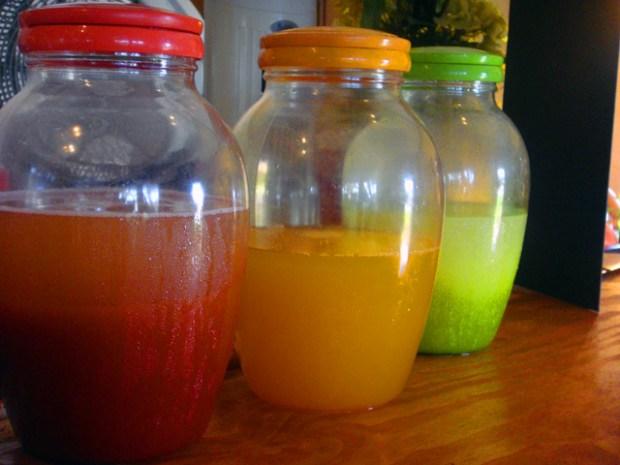 Mi Tierra Latin Fusion's Colorful Cuisine