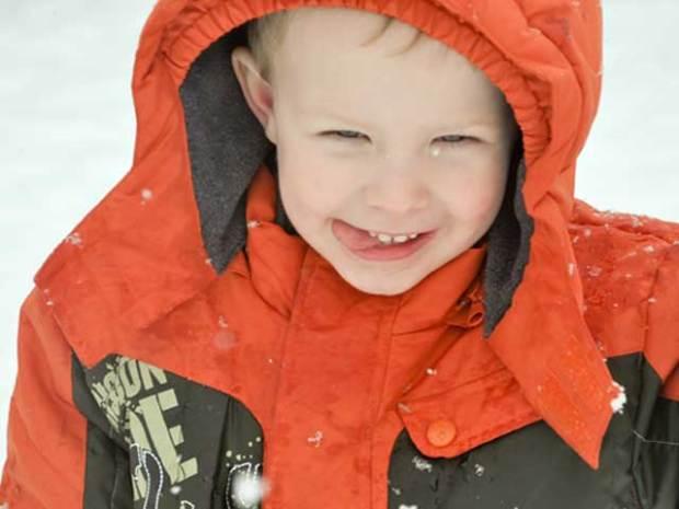 Snow-dorable: Gallery II