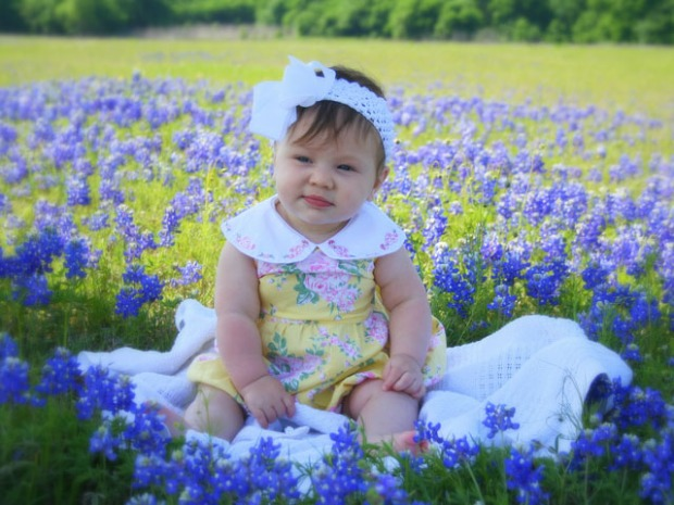 [2010] Sitting Pretty: Bluebonnet Photos: Gallery II