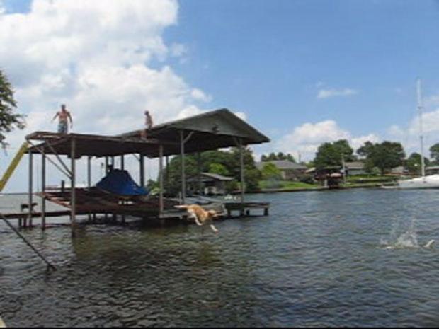 [DFW] Sam The Dock Jumping Dog