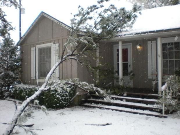 February Snowfall: Gallery I