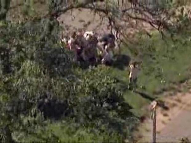 [NY] Osprey Lands Hard in Staten Island Park