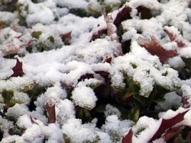 [DFW] Collin County Drivers Cautious After Snowfall