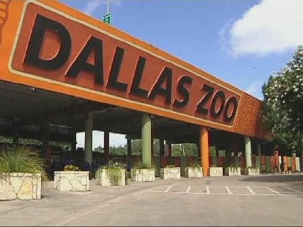 [DFW] Local Zoos See Silver Lining In Bad Economy