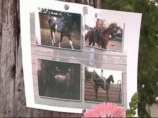 [DFW] Barn Blaze Kills Horses