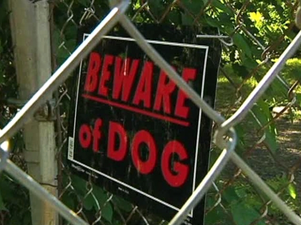[DFW] Pit Bull Owner Arrested in Dog Attack