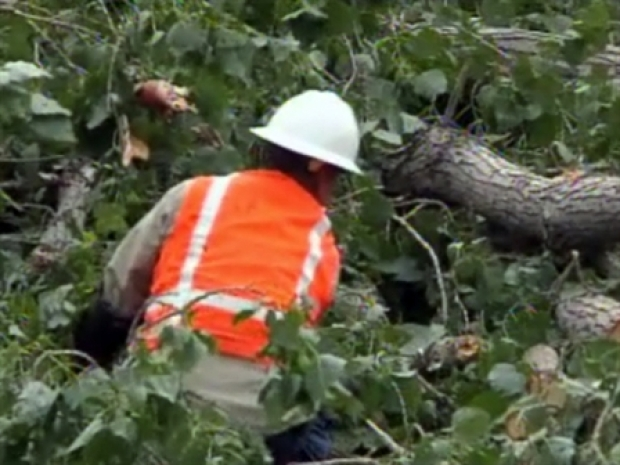 [DFW] Hard-Hit Denton Co. Cleans Up Storm Damage
