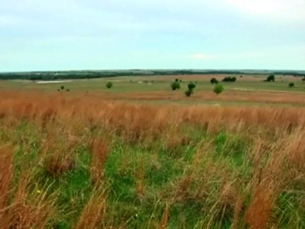 [DFW] Saving the Fort Worth Prairie