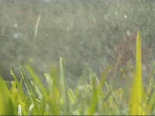 [DFW] Texas Irrigation Contractors Face Tough New Law