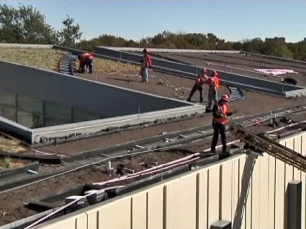 "[DFW] 6,000 Plants Sink Roots Into ""Green"" Roof"