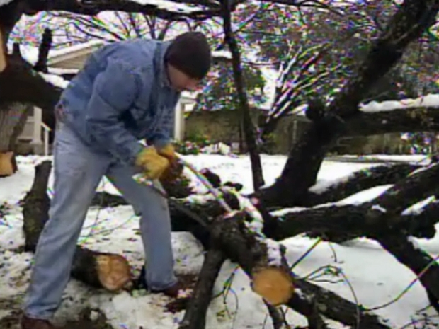 [DFW] Heavy Snow Damages Trees