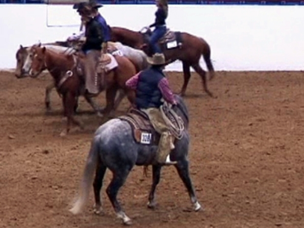 [DFW] The Fort Worth Stock Show Saddles Up
