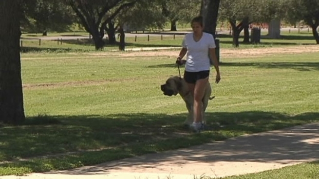 [DFW] Future of Fort Worth Walking Examined