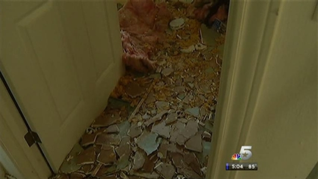 [DFW] Woman, 3 Dogs Survive Fort Worth House Explosion