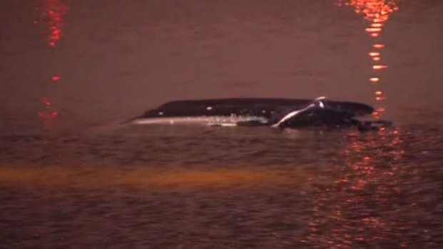 [DFW] Citizens and Officers Hailed as Heroes After Lake Rescue