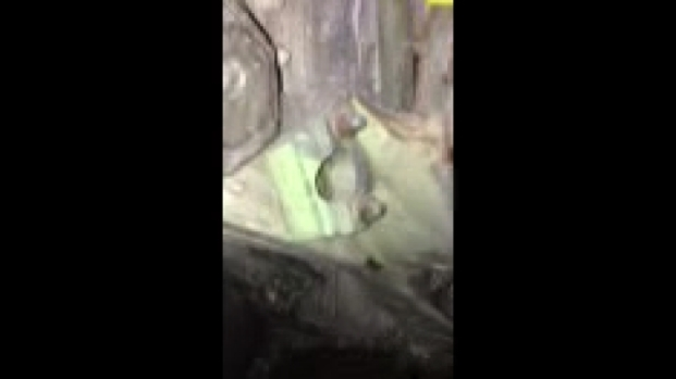 [NY] VIDEO: 9/11 Plane Part Found Near WTC