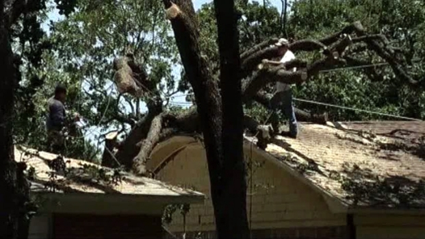 [DFW] North Texas Cleans Up Storm Damage