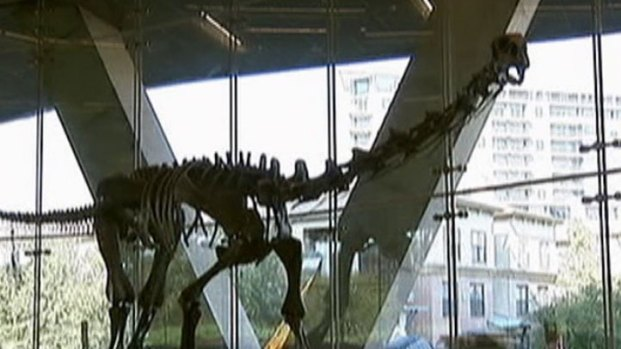 [DFW] Perot Museum Set to Open Saturday