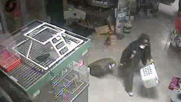 [DFW] Surveillance Video of Petland Dognappers