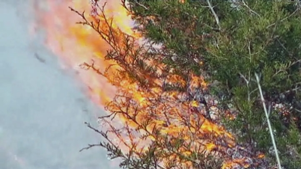 [DFW] Firefighters Trained in Battling Wildfires