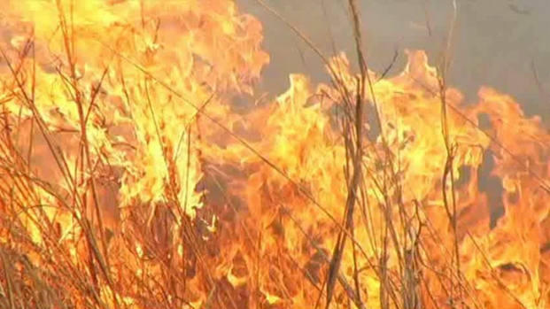 [DFW] Texas Panhandle Wildfire Leads to Evacuations